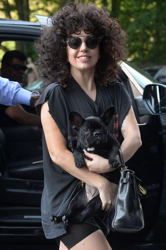 Lady Gaga- BatPig