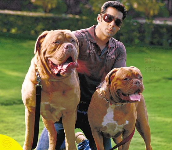 Salman- Myson and Myjaan